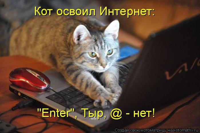 kotomatritsa_l (700x464, 292Kb)
