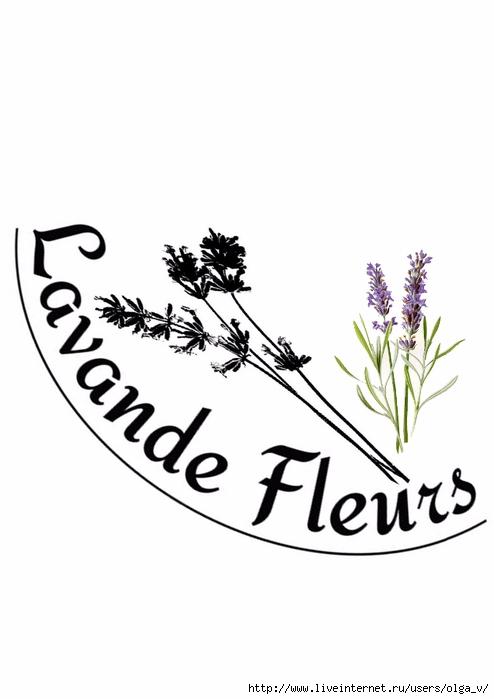 lavande fleurs (494x700, 100Kb)