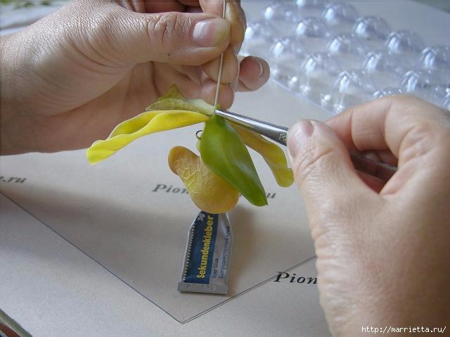 Орхидея Леди Слиппер из полимерной глины65) (640x479, 181Kb)