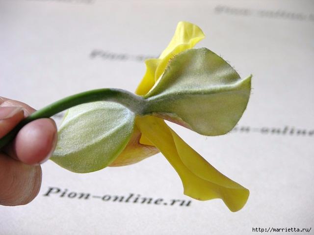 Орхидея Леди Слиппер из полимерной глины8