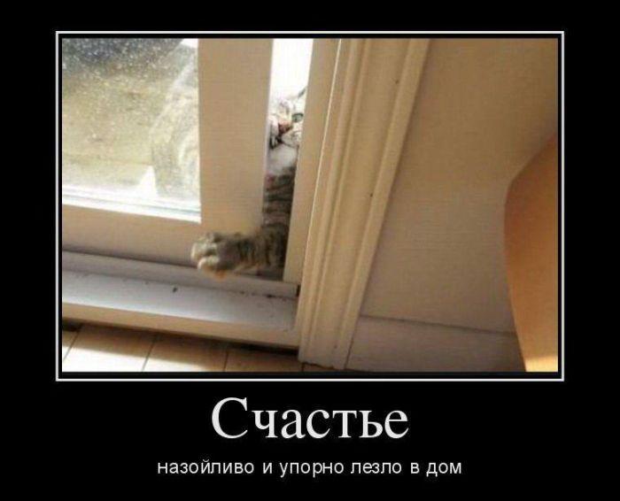 3085196_1451466456_demotivatory_01 (700x566, 34Kb)