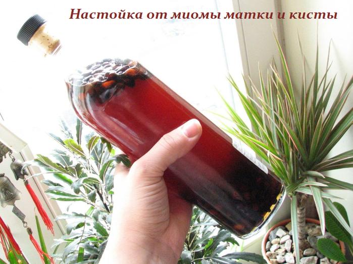 2749438_Nastoika_ot_miomi_matki_i_kisti (700x523, 538Kb)