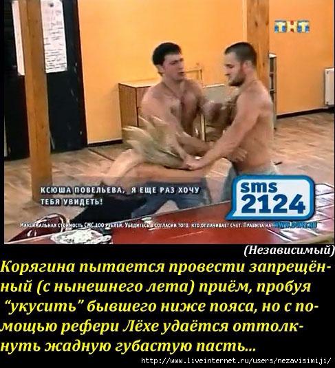 107766194_large_Sohranennoe_izobrazhenie_2013126_13136671_copy (487x535, 306Kb)