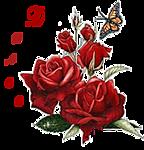 5369832_0_11393e_eade2a98_S (144x150, 33Kb)
