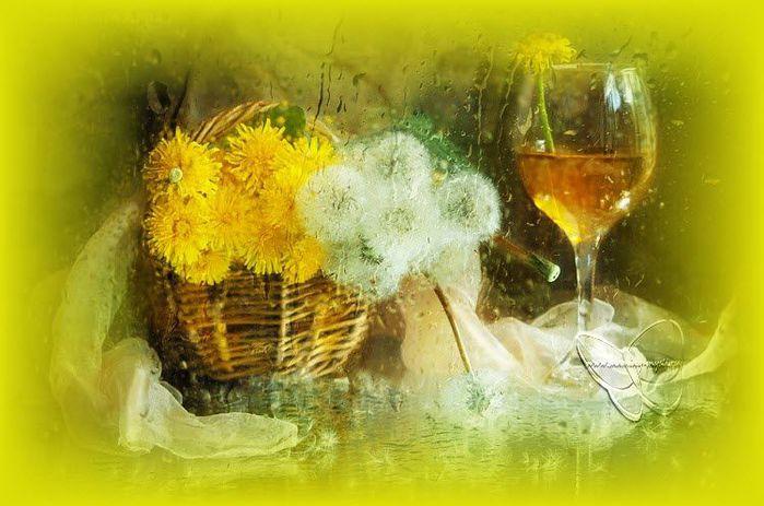 вино из одуванчиков/3368205_vino_iz_odyvanchikov (700x463, 58Kb)