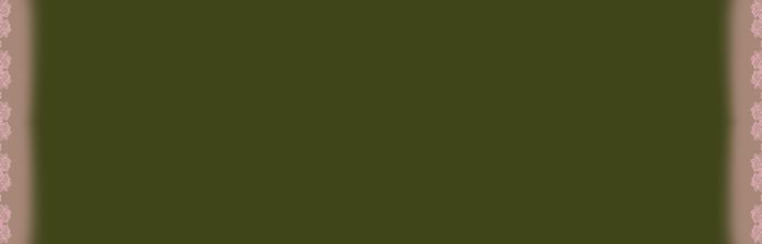 57   65  болотнозелен с розов кружев (700x224, 24Kb)