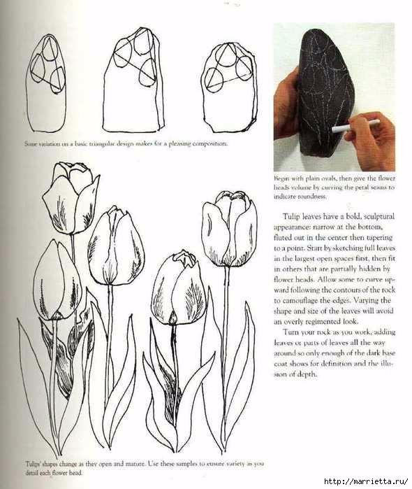 Тюльпаны на камне. Техника росписи (4) (590x699, 184Kb)