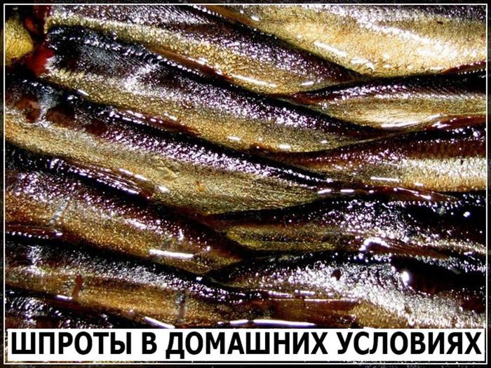 5999746_image_12 (700x525, 202Kb)