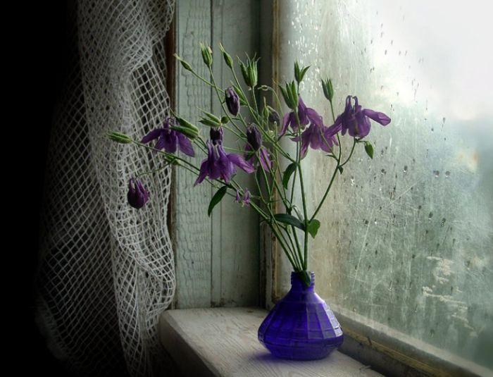 дождь за окном (700x535, 215Kb)