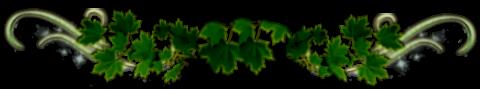1263 (480x89, 57Kb)
