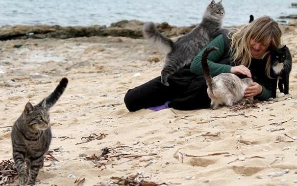 кошачий пляж на сардинии 9 (606x379, 246Kb)