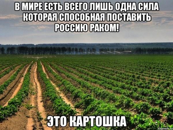 1465272206_0506161__1 (600x450, 108Kb)