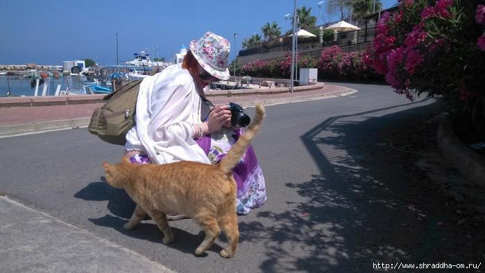 Кипр, май 2016 (122) (700x394, 231Kb)
