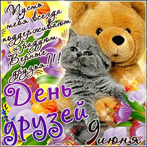 3768849_den_dryzei (500x500, 346Kb)