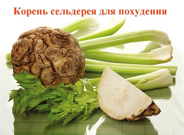 "alt=""Корень сельдерея для похудения""/2835299_Koren_seldereya_dlya_pohydeniya (700x512, 213Kb)"