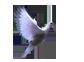аваторка голубь (84x62, 4Kb)