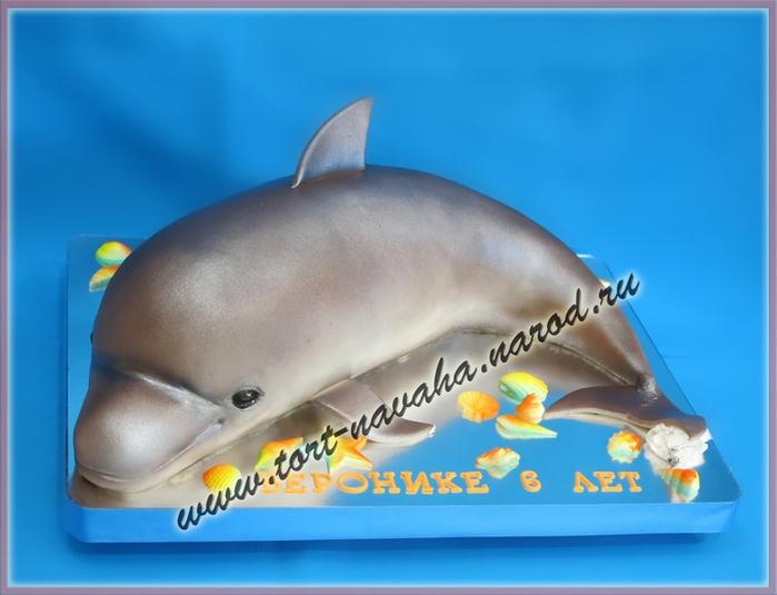 торт дельфин (700x535, 181Kb)