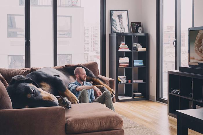 mitch-boyer-vivian-the-giant-wiener-dog-etoday-06 (700x467, 309Kb)