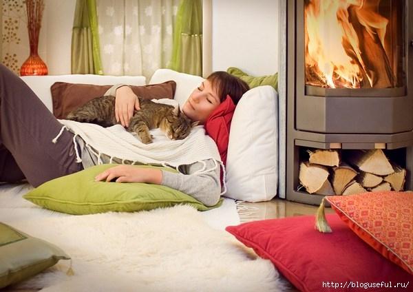 кошки-домашние лекари