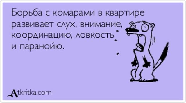 5672049_1370693307_atkrytki15 (640x356, 37Kb)