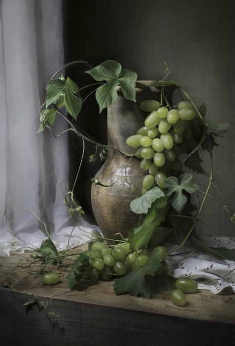 foto_Svetlana_Pavlovskaya_18-e1435159142210 (477x700, 264Kb)