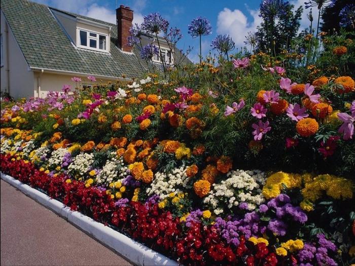 многолетние-цветы-многоярусная-клумба-фото (700x525, 503Kb)