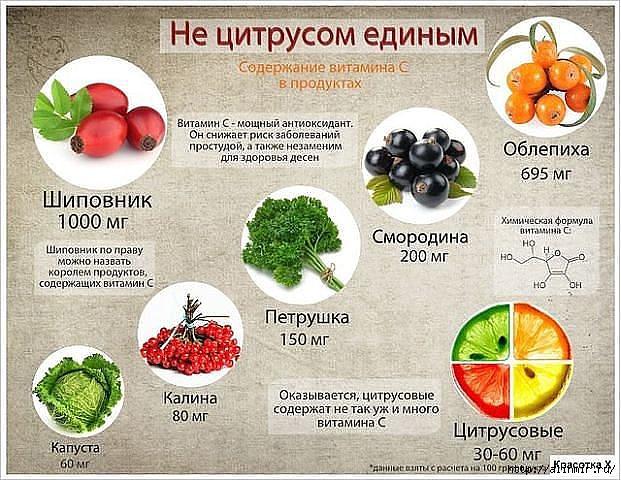 5283370_prodykti_vitamini (621x480, 225Kb)