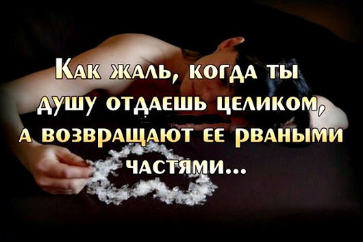 3416556_image_4_ (530x353, 36Kb)
