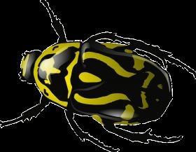 bug_PNG4004 (280x217, 38Kb)