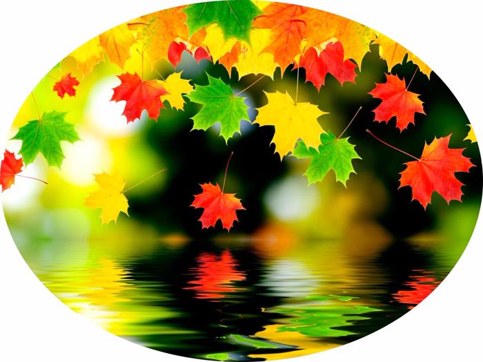 Осенние-листья---копия1 (700x525, 376Kb)