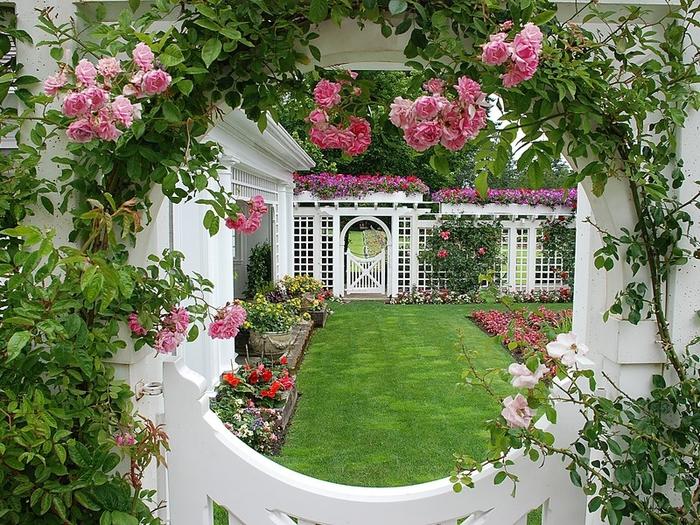 garden-rose-window (700x525, 395Kb)