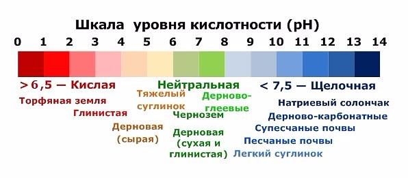 ПОЧВА К�