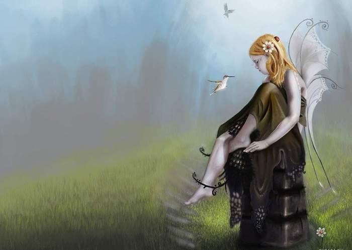 4199468_fairy_13 (700x498, 25Kb)