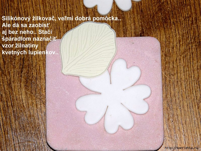 Modelado de masilla de azúcar para las tortas.  flores hermosas.  Master Class (3) (700x525, 344KB)