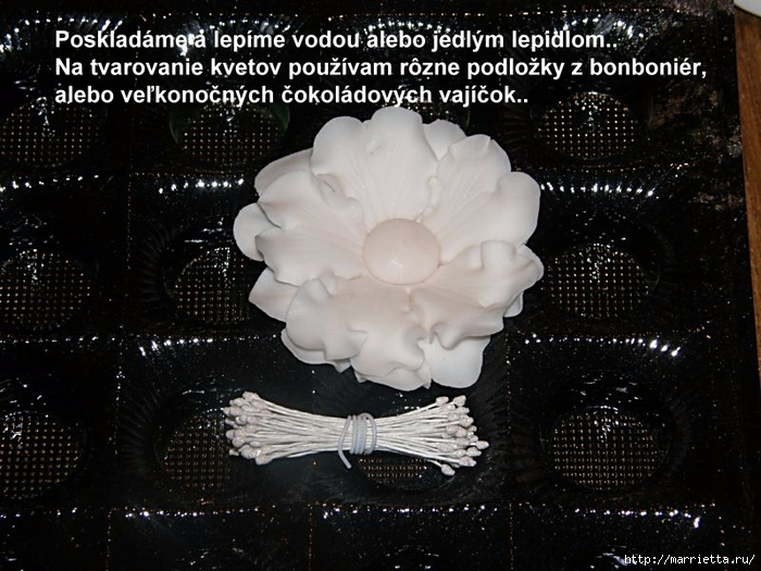 Modelado de masilla de azúcar para las tortas.  flores hermosas.  Master Class (7) (700x525, 299KB)