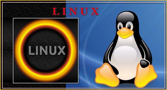 4026647_logo_LINYKS_kollaj (649x349, 67Kb)
