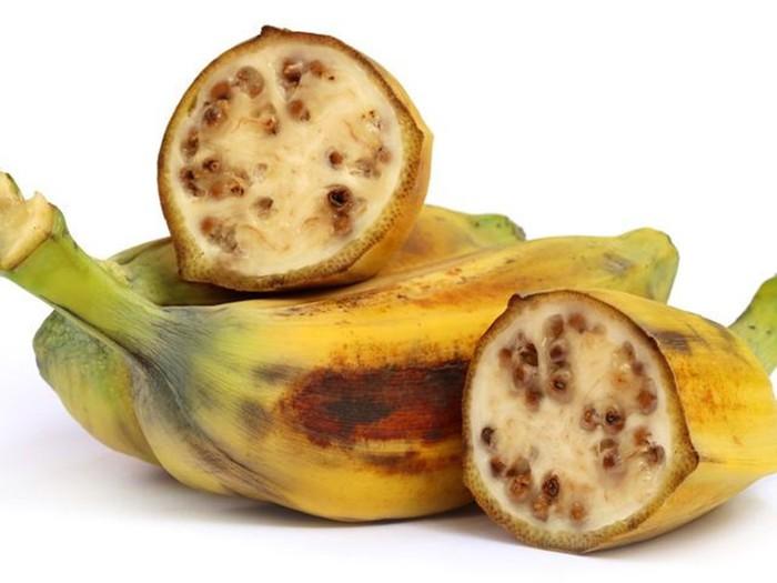 Дикие родственники: как выглядели овощи и фрукты до селекции