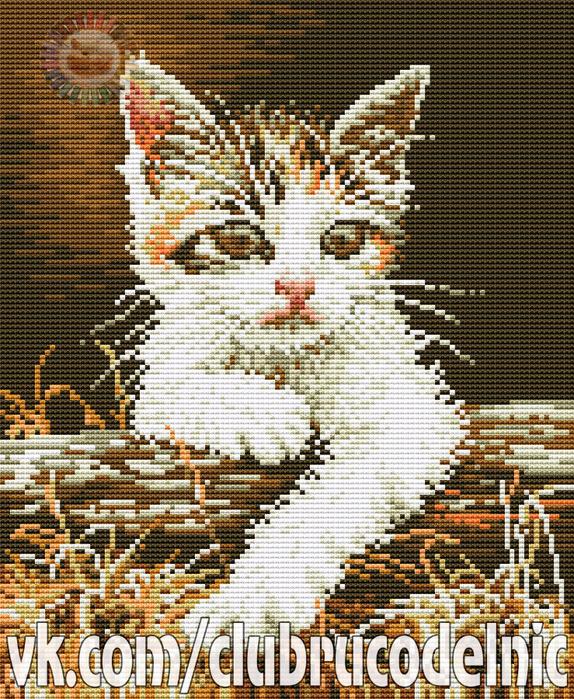Cat (574x700, 712Kb)
