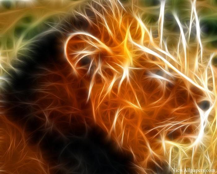 3d-Animals-Lion-Head (700x560, 132Kb)
