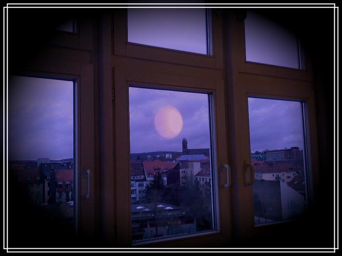 Foto-0048.v (700x525, 75Kb)