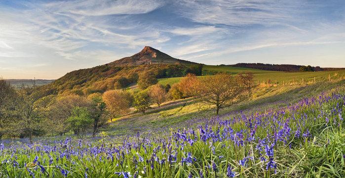 spring_sunlight_on_roseberry_topping_by_yorkshiresam-d66oyiu (700x361, 116Kb)