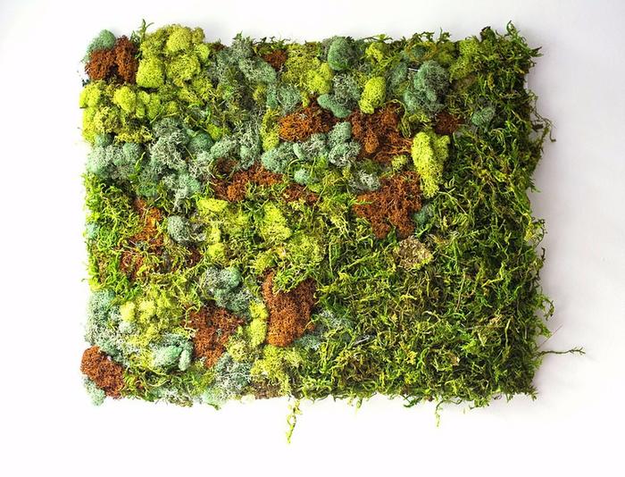 декоративный мох Эмма Мэттсон 11 (700x534, 470Kb)