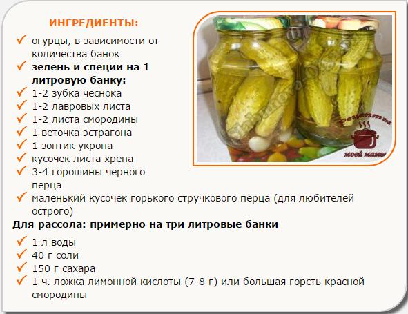 Рецепт вкуснейших маринованных огурцов