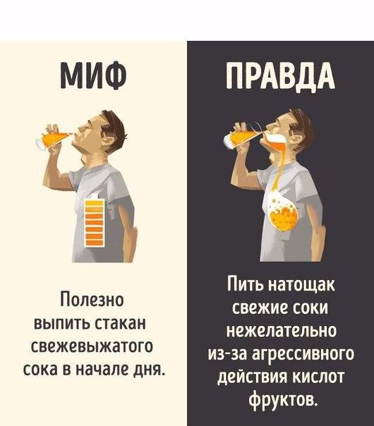 10 мифов о популярных напитках, которые можно смело забыть (530x604, 146Kb)