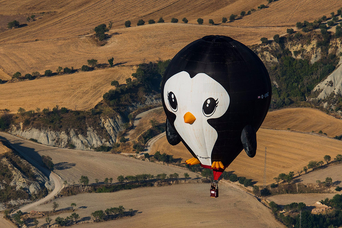 воздушные шары фото 7 (700x465, 464Kb)