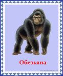������ обезьяна (578x700, 330Kb)