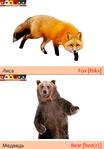 ������ Лиса+медведь (489x700, 200Kb)