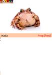 ������ жаба+собака - копия (489x700, 118Kb)