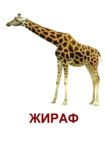 ������ 4 (466x661, 177Kb)