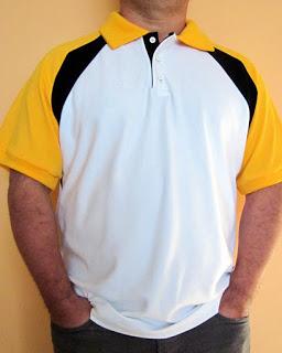 como hacer chemise polo chomba caballero manga ranglan patron costura gratis baul costureras-002 (256x320, 21Kb)
